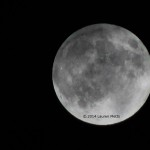 September 2014 Supermoon. Photo credit: Lauren Metts