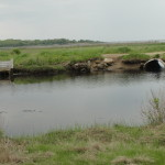 This photo, from Barn Island Wildlife Management Area, shows the pre-restoration culvert on the left and the much larger post-restoration culvert – put in place to increase tidal flow – on the right.